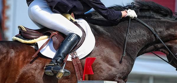 Как оседлать лошадь?