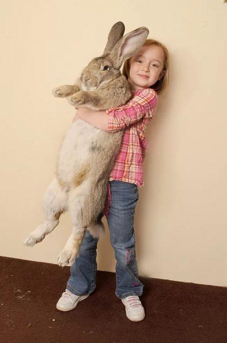 Как назвать кролика?