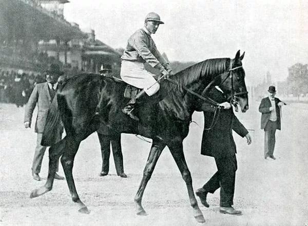 Лучшие лошади